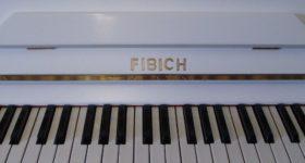 FIBICH